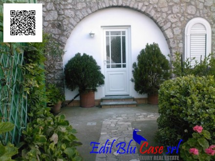 Nice apartment in the green of Capri