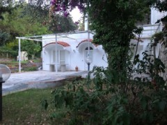 The House of the Moon bathed in greenery - 3